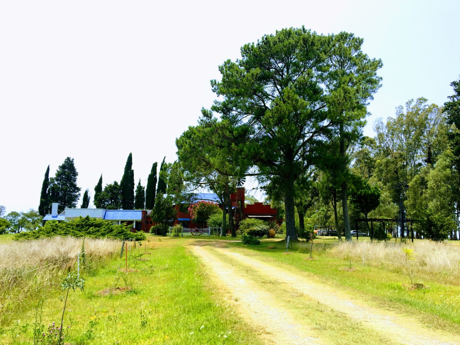 Altos Eco Village colonia